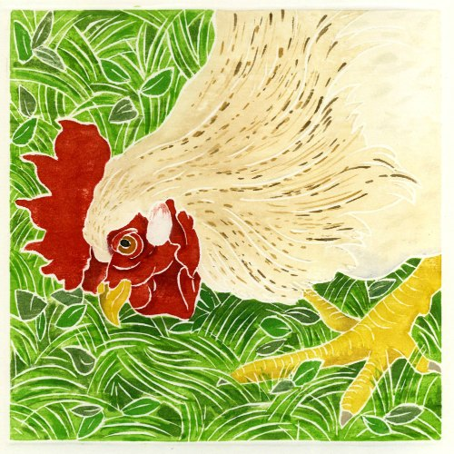 Rooster in the Grass_